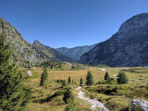 mountain  mountains  mountain forest