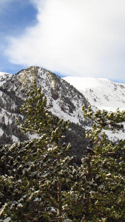 mountain nevada top