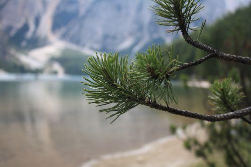 mountain lake mountains