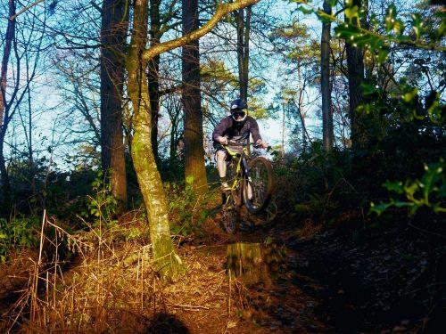mountain bike sport forest