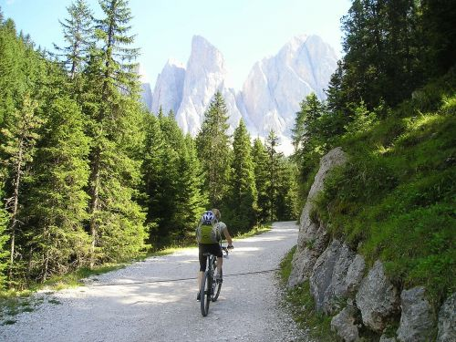 mountain bike bike tour