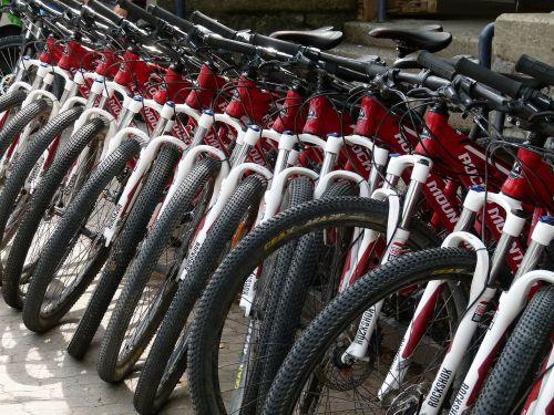 mountain bikes renting mountain biking