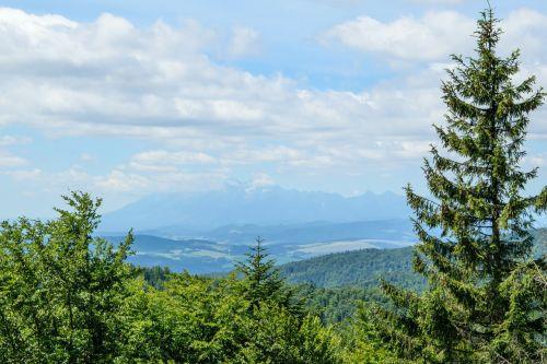mountain landscape panorama mountain high tatras
