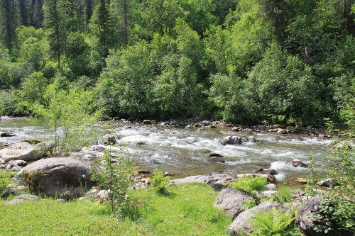 mountain river mountain altai river