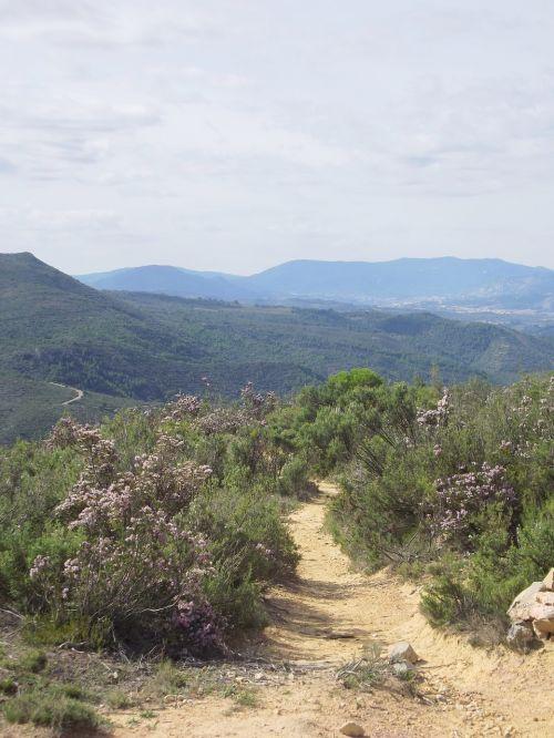 mountain trail mountain path