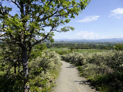 kalnas, žygis, žygiai, takas, purvo & nbsp, takas, kelias, gamta, vaikščioti, kalnų takas