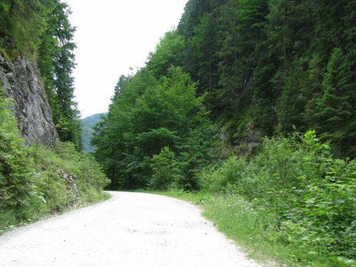 Mountain Walking Trail