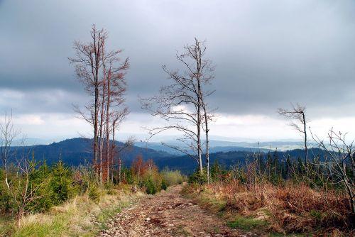 mountains view landscape