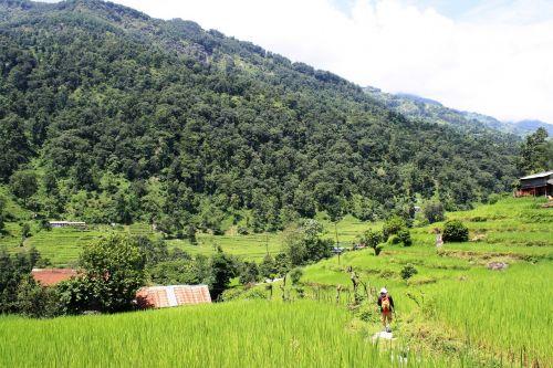mountains nepal himalaya