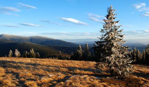 mountains view rysianka