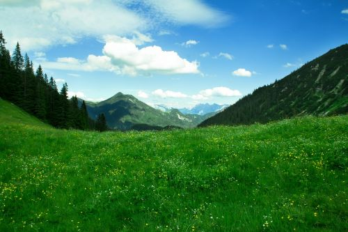 mountains trail alpine