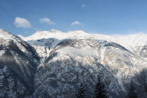 mountains firs alpine