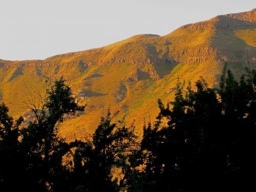 mountains yellow-green sunlight