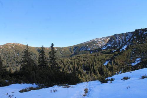 mountains the carpathians slopes