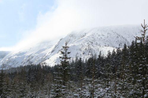 mountains krkonoše giant mountains szklarska poręba