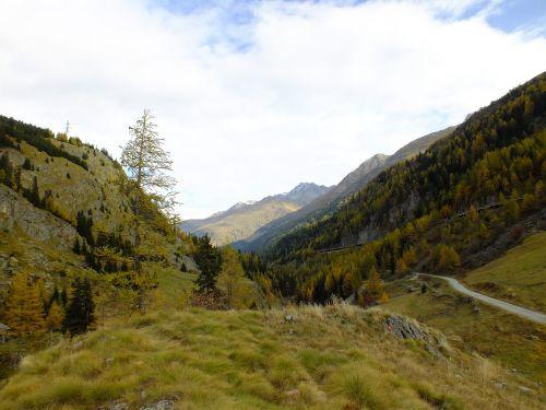 mountains switzerland green