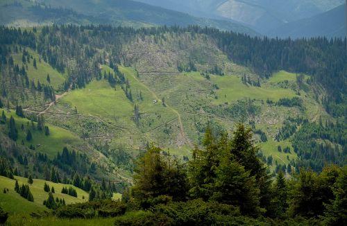 mountains the carpathians landscape