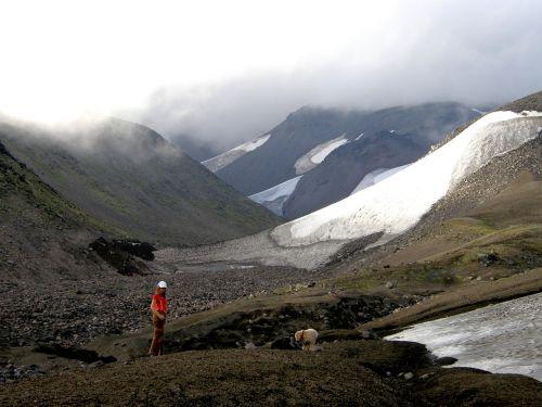 kalnai,sniegas,vasara,vaikščioti,rūkas,kraštovaizdis,gamta,debesuota,Sneznik,šuo,spanielis