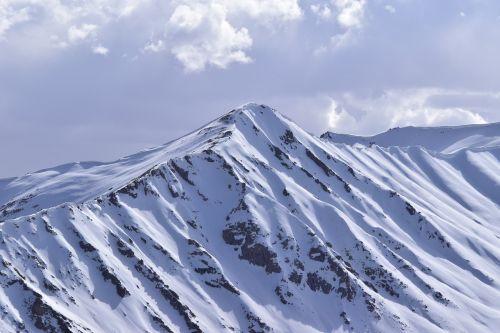 mountains snow leh