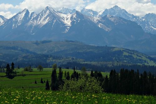mountains spring tatry