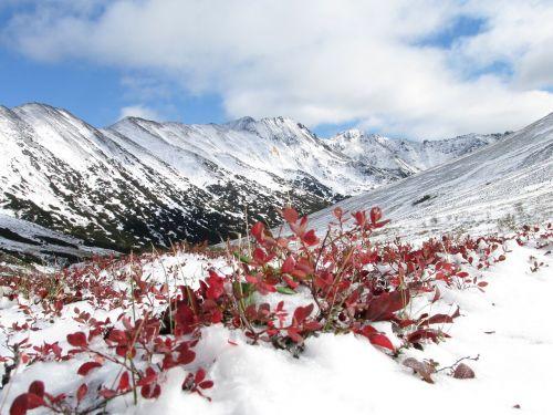 mountains autumn the first snow