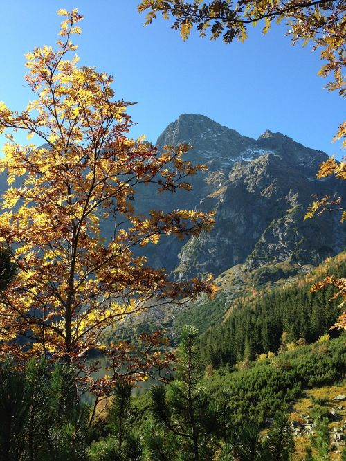 mountains tatry autumn
