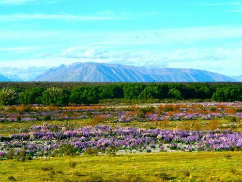 mountains landscape outdoor