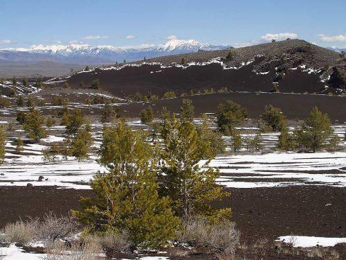 mountains prairie trees