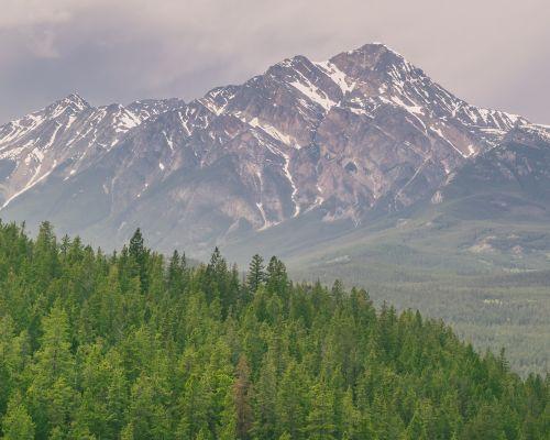 kalnai,miškai,gamta,kraštovaizdis,miško peizažas,medis,žalias,vaizdas,dangus,kalnų peizažas,vasara,peizažas,miško medžiai,kalnas,kelionė,nuotykių keliones,kalnų,pavasaris,atostogos,ramus