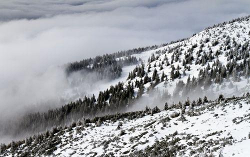 mountains,landscape,hillside,outdoor,mountain landscape,dramatic,forest landscape,cloud,fog,haze,countryside