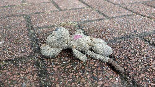 mouse lost victim of a traffic accident