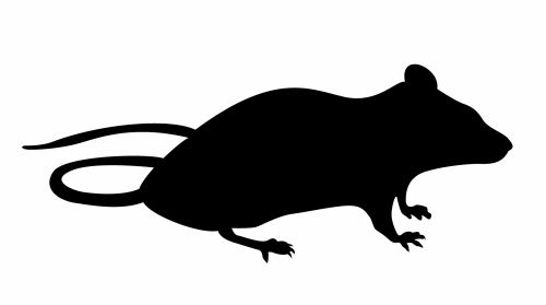 Mouse Silhouette Sitting