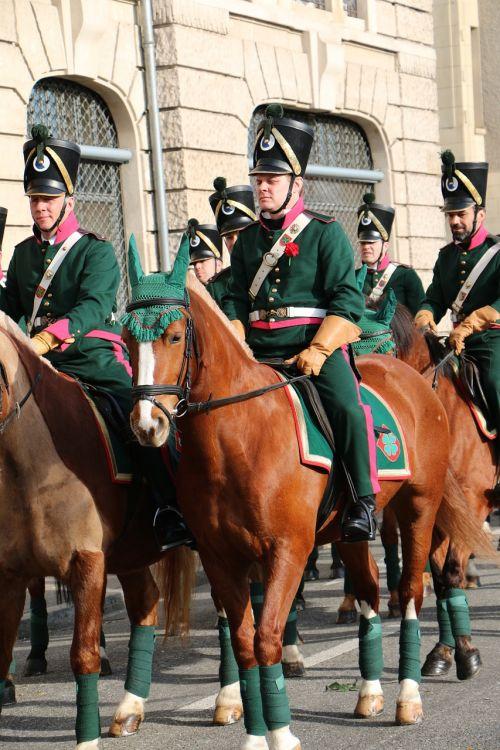 move horses costumes