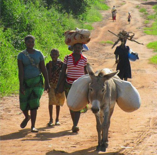 mozambique women nature