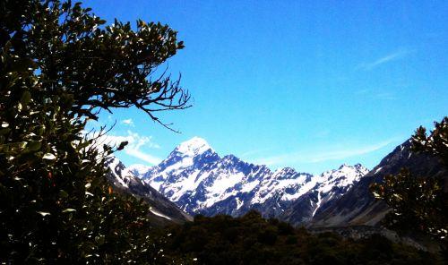 Mt. Cook