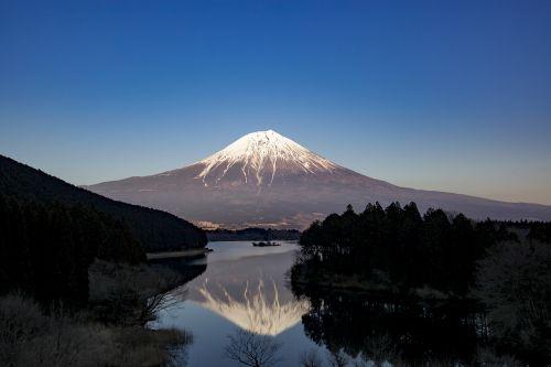 mt fuji fuji lake tanuki