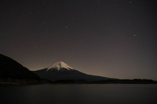 mt fuji lake tanuki shizuoka prefecture