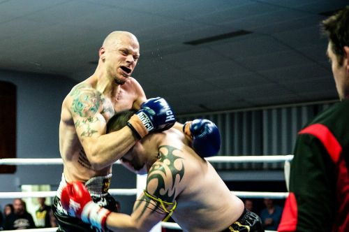 muay thai fight kickboxing