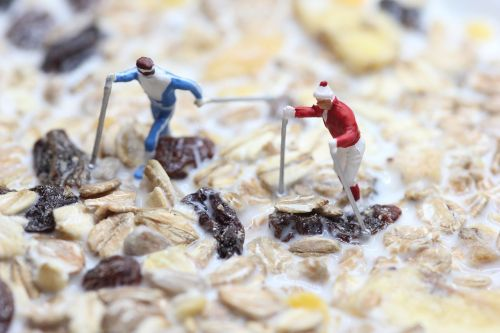 muesli nordic walking miniature figures