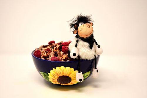 muesli bowl cow