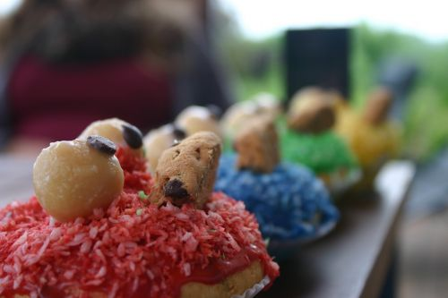muffins baked color