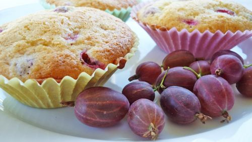 muffins gooseberry pink