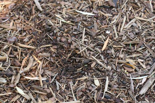mulch dirt topsoil
