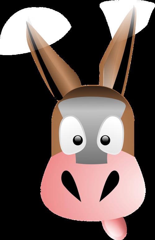 mule animal mammal