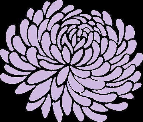 mum floral flower