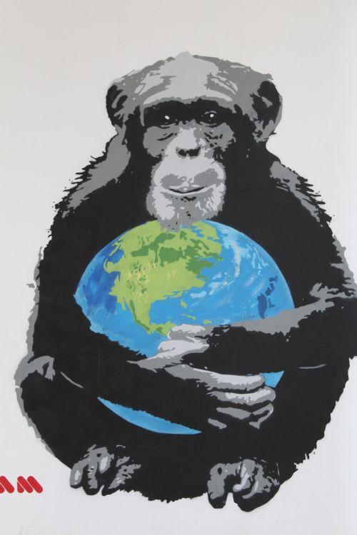 murals monkey world