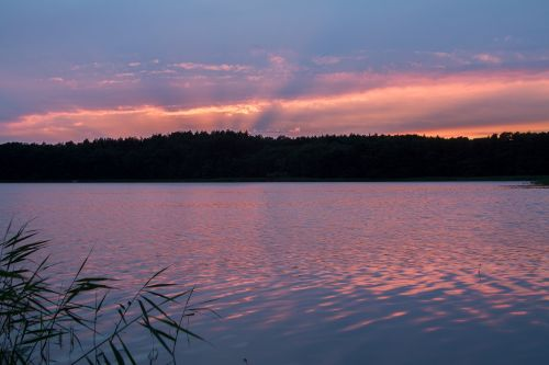 müritz mecklenburgische seenplatte conservation park