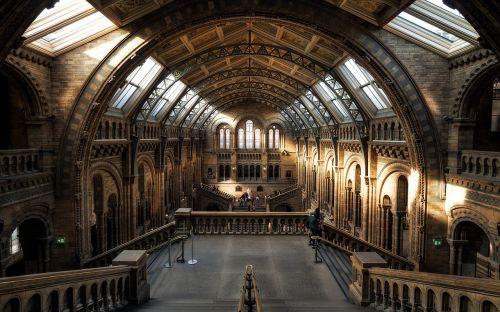 museum london natural history
