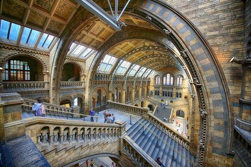 museum  london  dinosaur