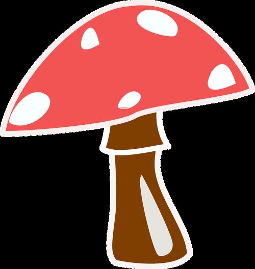 mushroom toadstool red